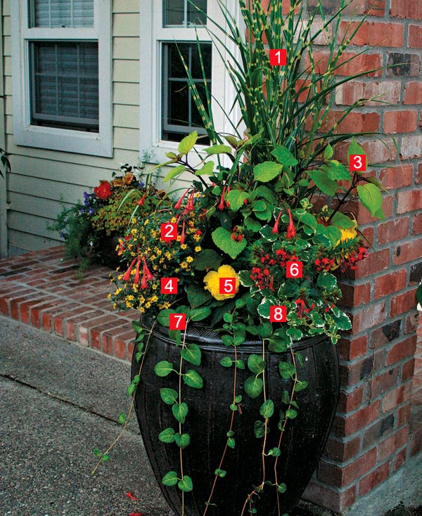 Stylish Shady Containers Finegardening