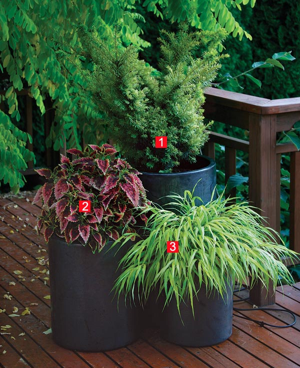 Stylish Shady Containers Low light doesn t have to cramp your creativity or limit your plant choices