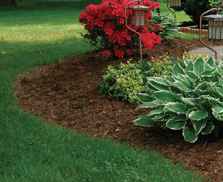 Use Mulch to Manage Your Soil Conditions FineGardening