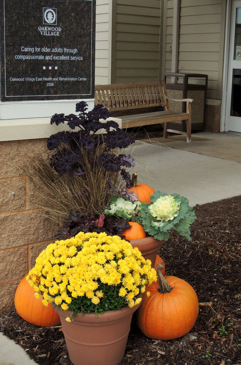 Fall At The Gardens At Oakwood Village Prairie Ridge In Wisconsin Finegardening