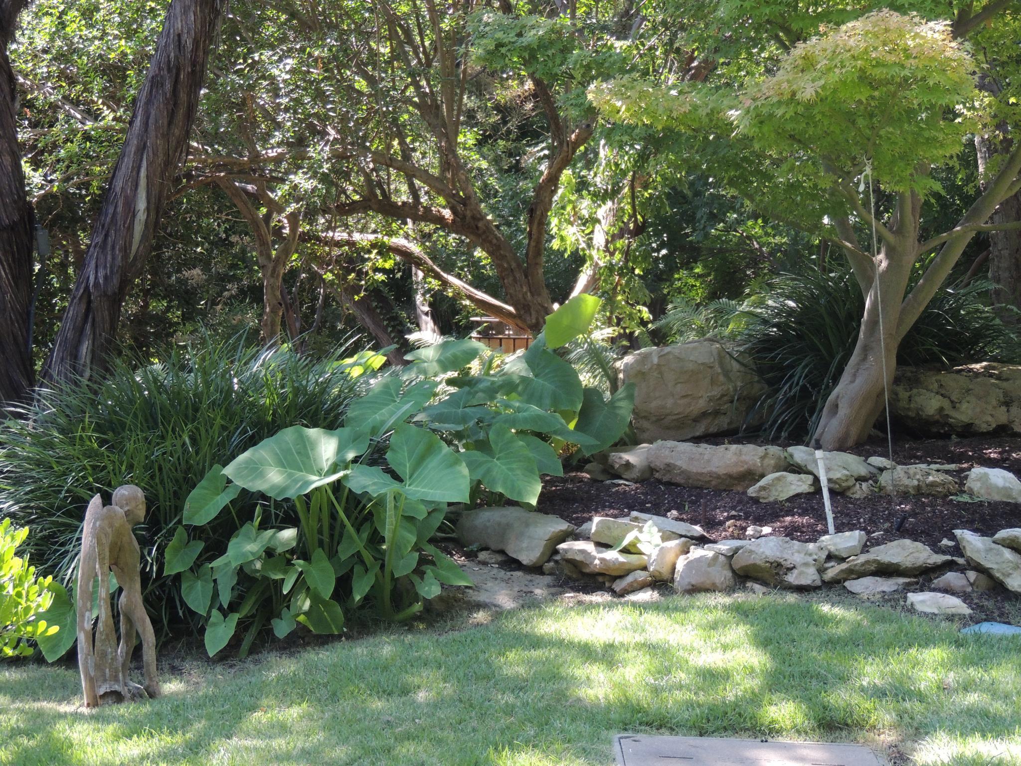 Bonnieu0027s Visit To The Zilker Botanical Garden In Texas