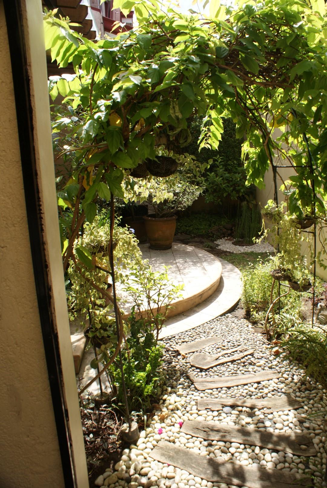 Raul's tropical garden in the Phillipines - FineGardening