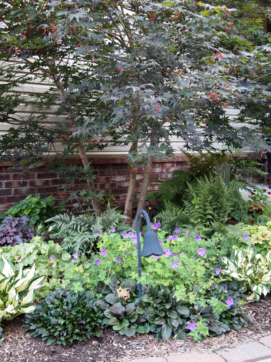 Famous garden in shade images landscaping ideas for for Garden information sites