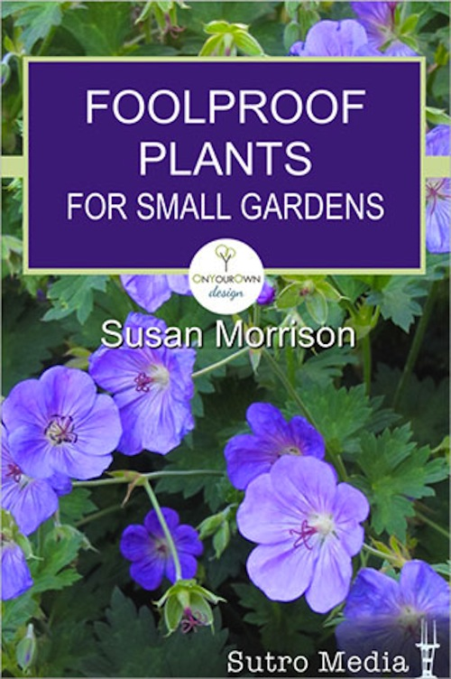 Great Stocking Stuffer: U201cFoolproof Plants For Small Gardensu201d Meets Cyber  Monday