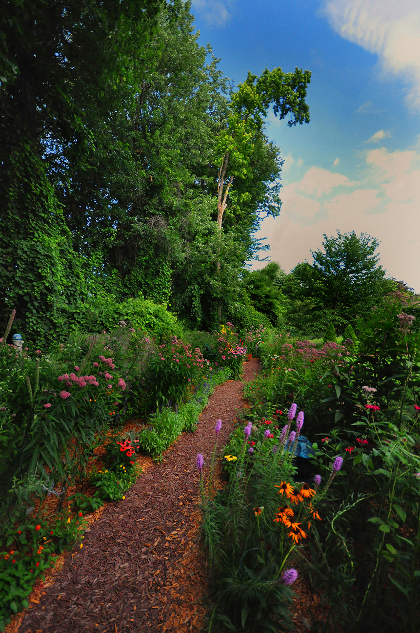 More From John 39 S Butterfly And Hummingbird Garden In Michigan Finegardening
