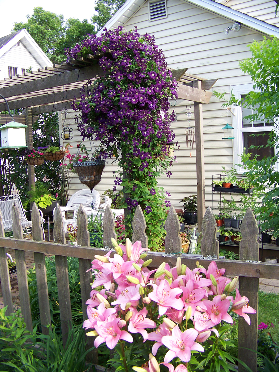 Carol S Garden: Carol Jean's Garden In Wisconsin