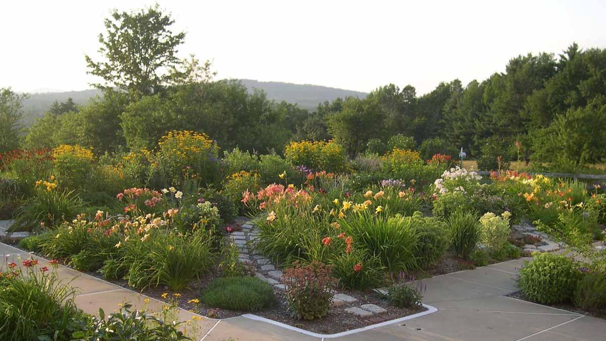 Harriet s garden in Maine
