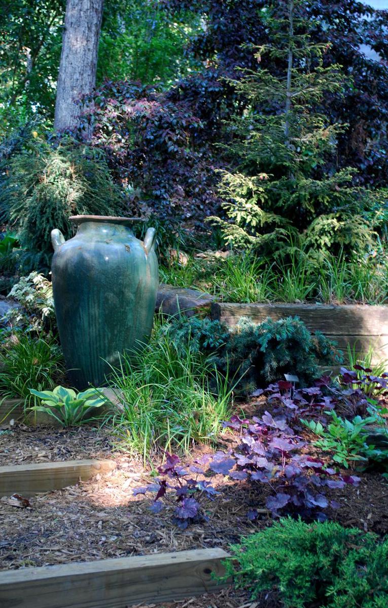 Jay's Garden In North Carolina, Revisited