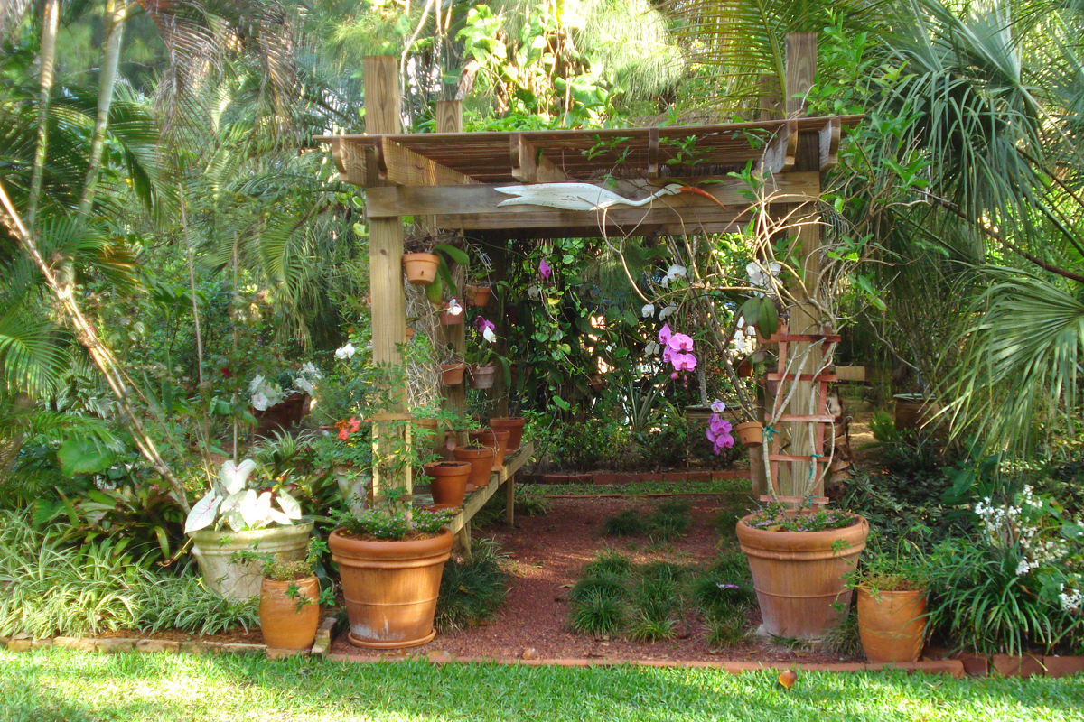 Reader photos michael 39 s garden in florida finegardening - Container gardening in florida ...
