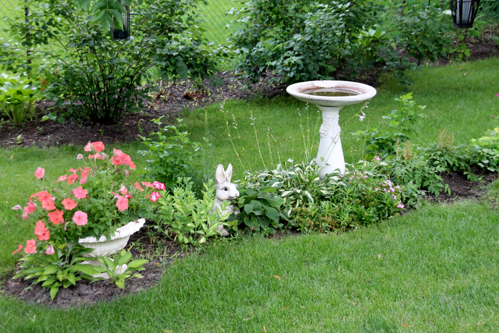 Kirstin S Young 39 From Scratch 39 Garden In Illinois Finegardening