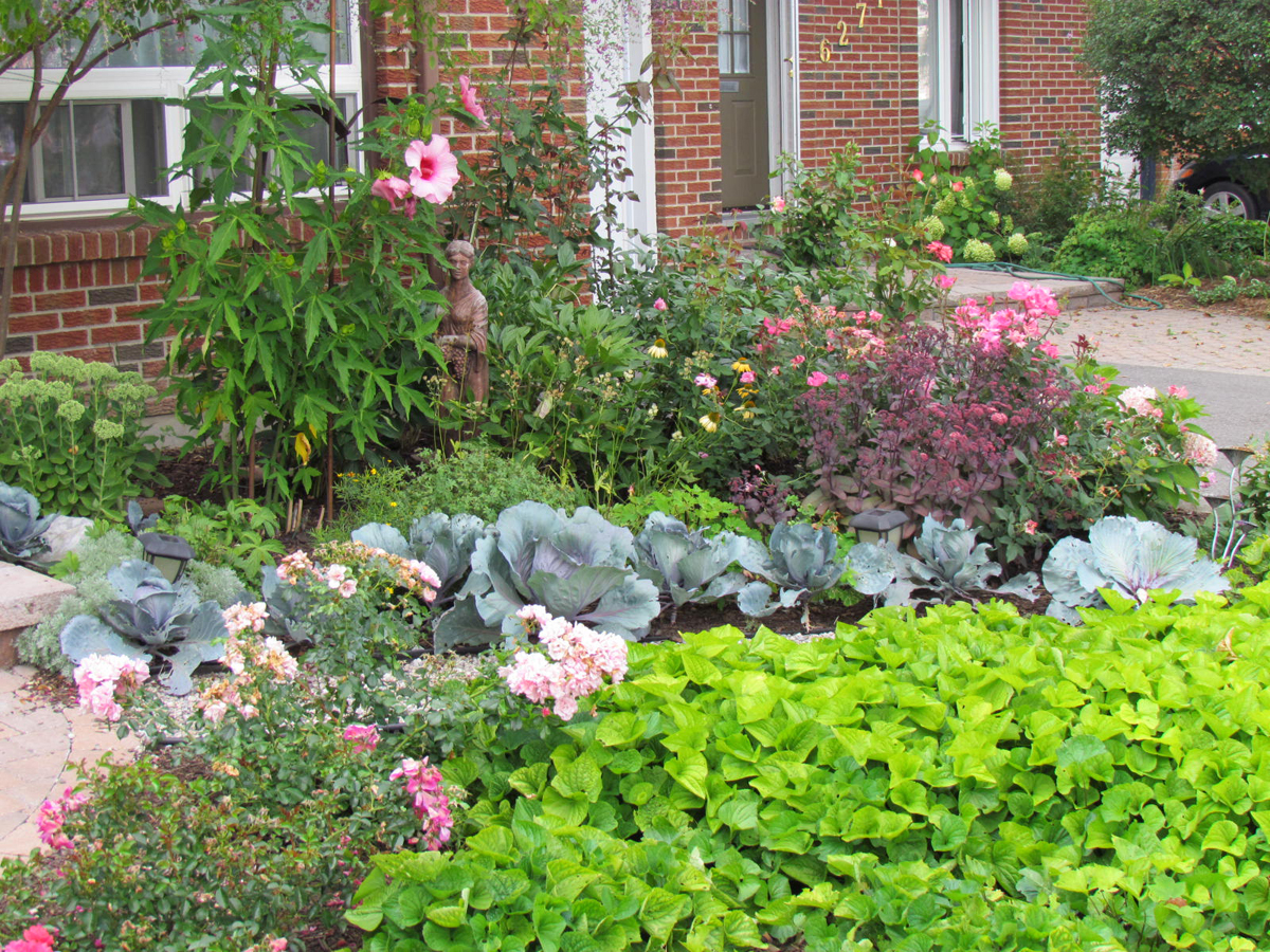 Gardens By Maria: Maria's Lawn-be-gone Front Yard In Ontario