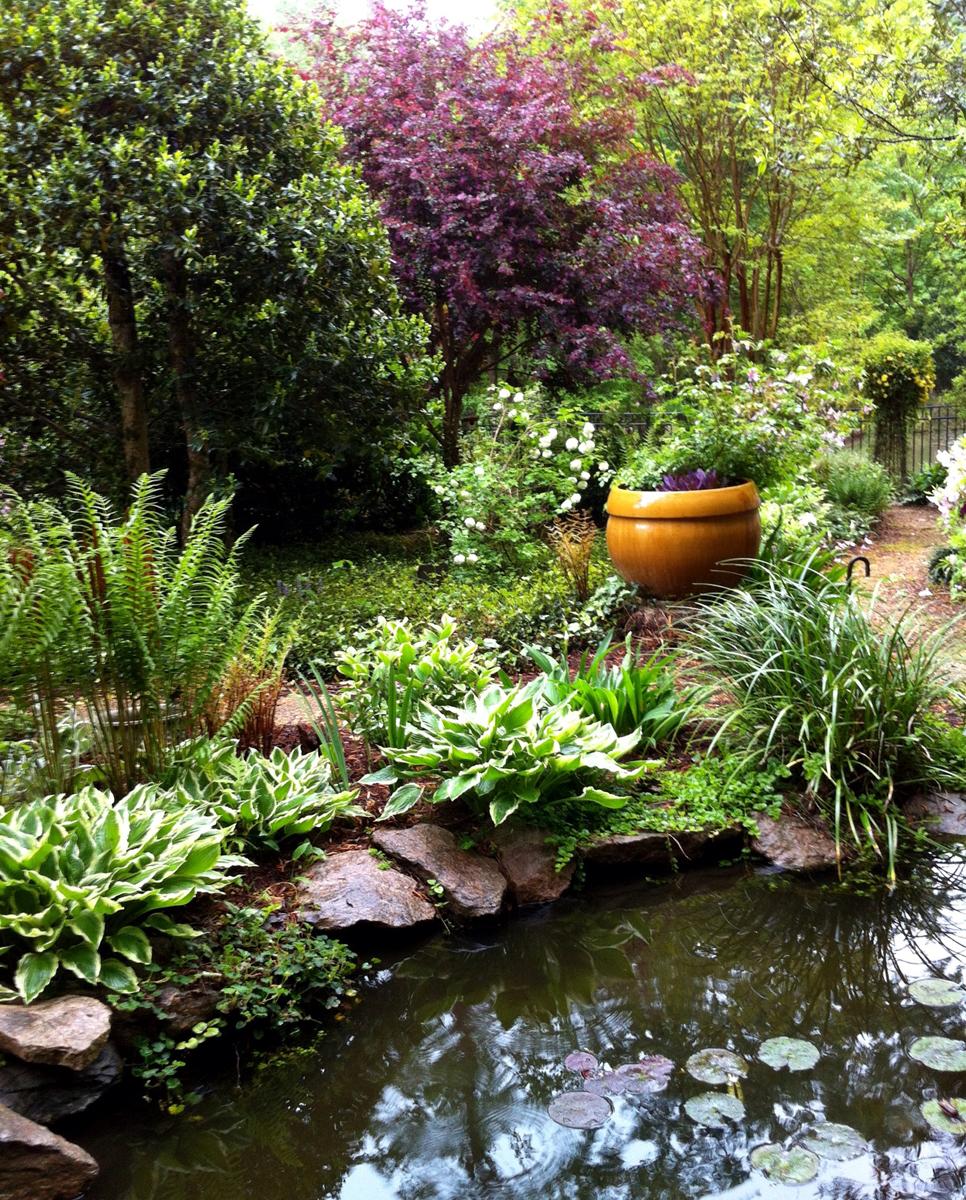 Karen ted 39 s garden in north carolina finegardening for North carolina vegetable gardening