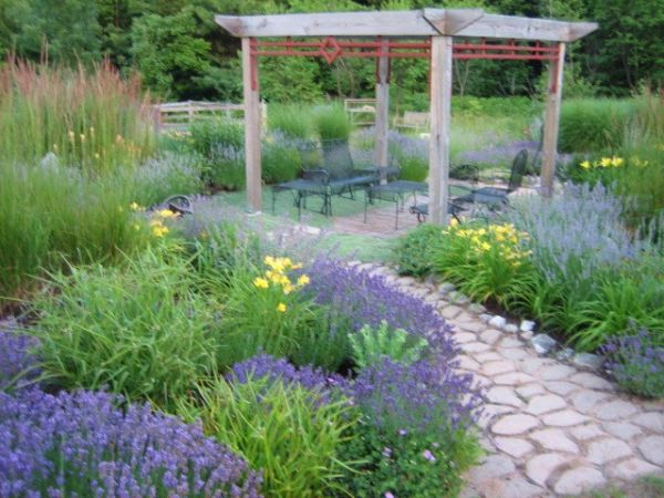 Beau Lavender Garden Wins Backyard Garden Spaces Contest