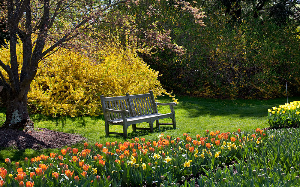 Reader Photos Springtime At Longwood Finegardening