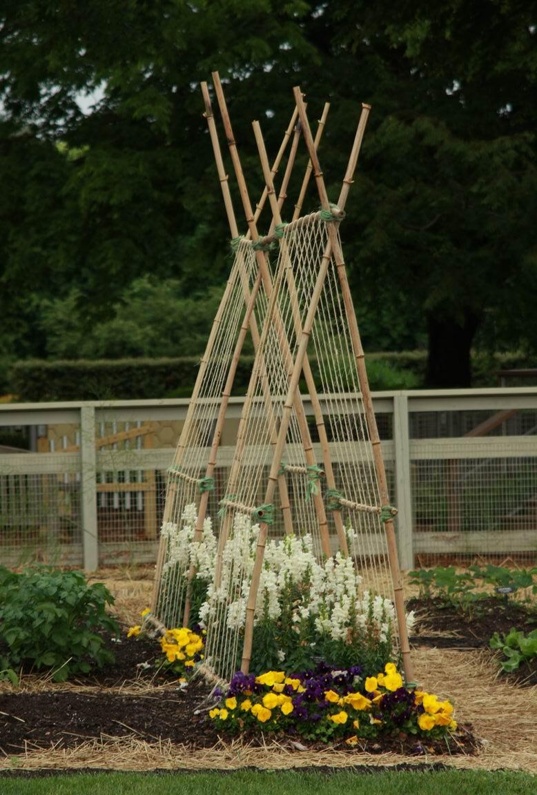 Gardening Trellis Ideas Part - 41: Veggie Trellising Ideas From Longwood Gardens