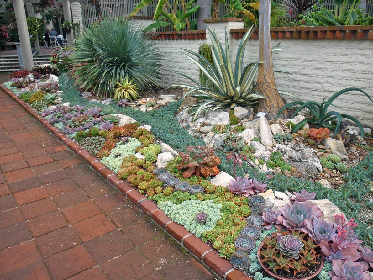 Succulents Garden Design Gazebodesign