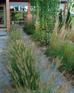 Designing with grasses finegardening for Landscape design using ornamental grasses