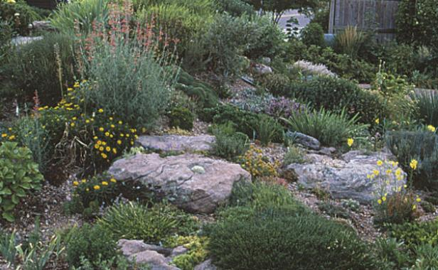 Since Rock Garden Plants Require Good Drainage, The Author Made Her Own  Slope