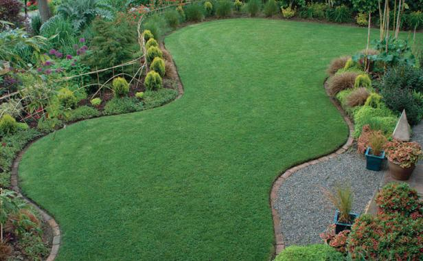 8. Turf Has Its Place Design