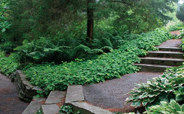 Lovely 2. Watch Your Steps. Design Ideas