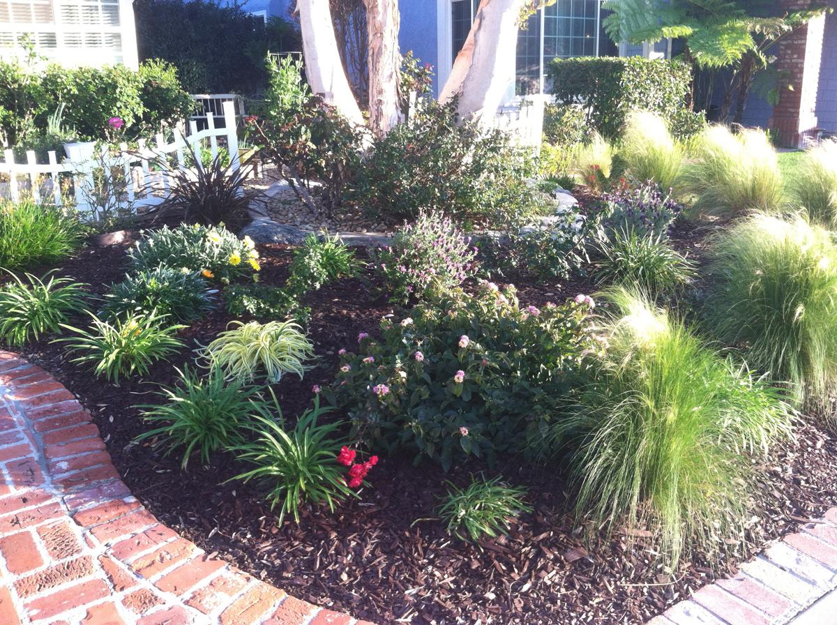 Karen's no-lawn front yard in California - FineGardening on No Grass Garden Ideas  id=85509